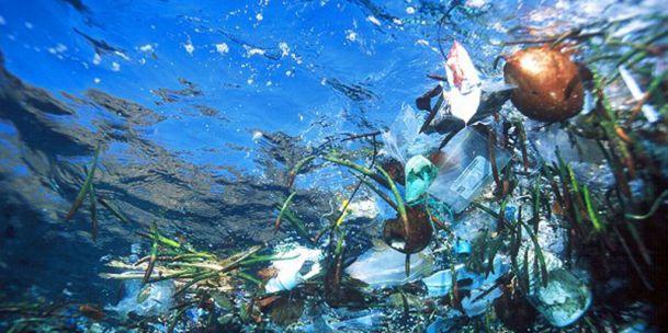 Dumpen van afval grootste ergernis