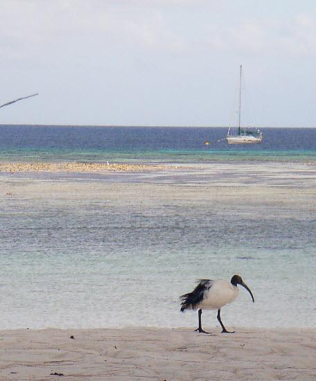 Verkenningstocht op Aldabra