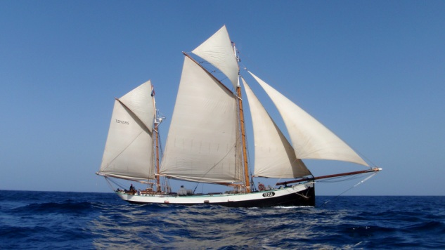Dutch Tall Ship Tecla 'Beste Sail Training Organisatie'