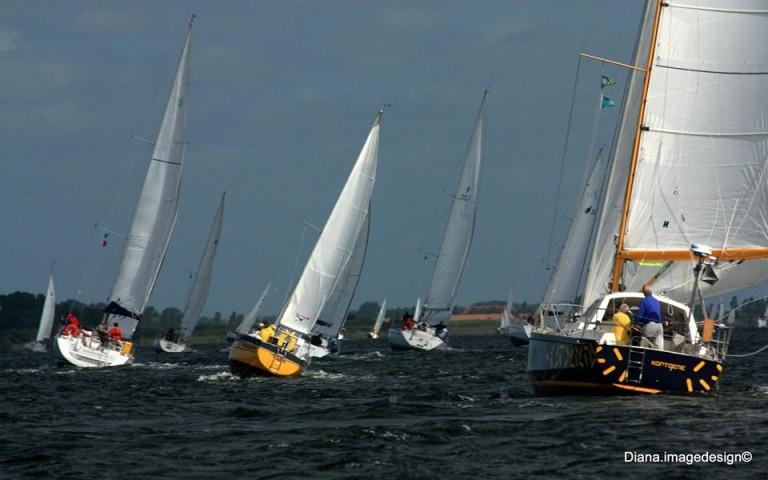 Delta Marina viert jubileum
