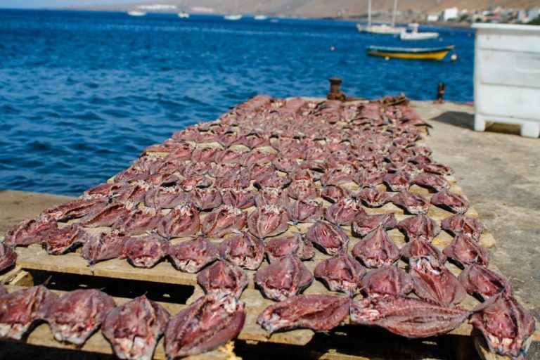 Zeilen in Kaapverdië