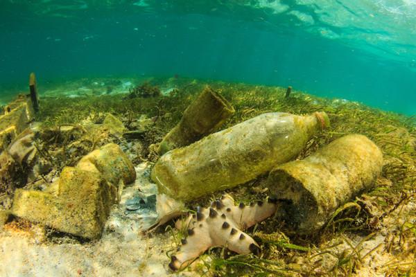 Plasticdeeltjes gevonden in wateren rondom Antarctica