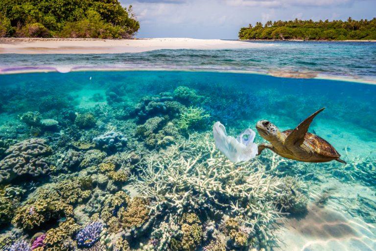 Docu: Een Plastic Oceaan