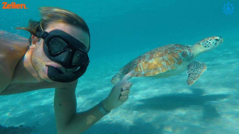 SY Anne Marie (S4A5): Zes weken vermaak op Bonaire