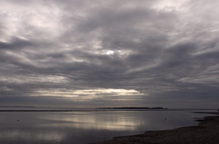 Bodem Grevelingenmeer bezaaid met dode schelpdieren, zeesterren en krabben