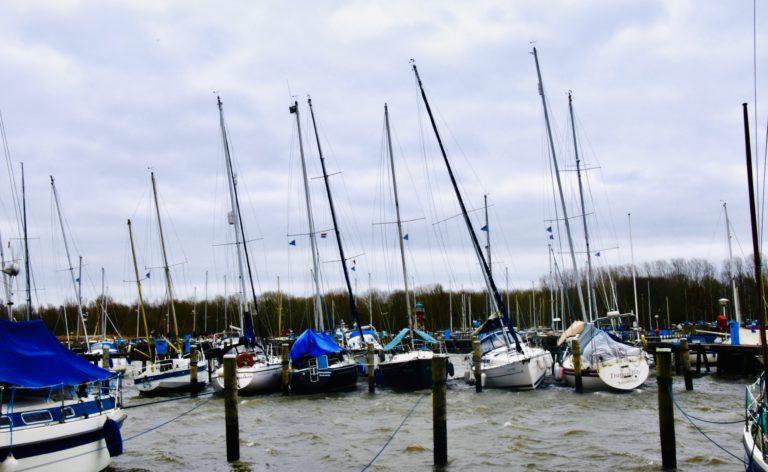 Zonder schade de storm doorgekomen? + weerupdate Henk Huizinga
