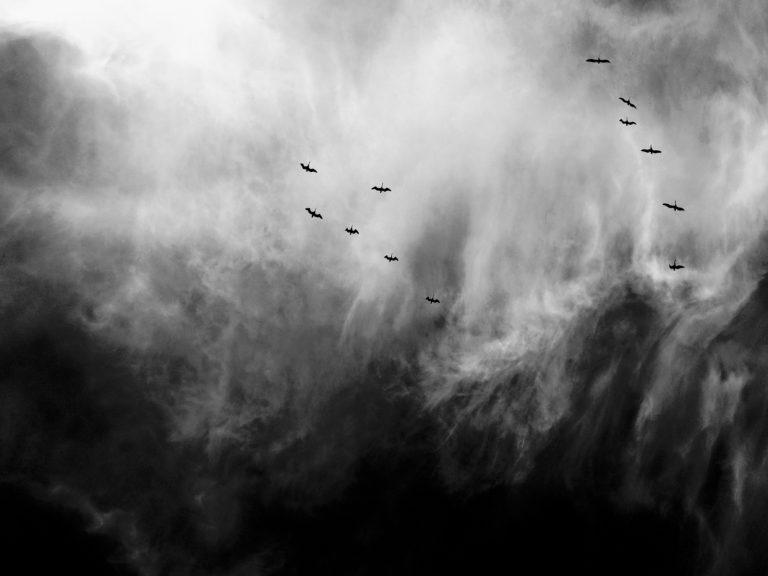 Zien: 6 stormvideo's waar je best bang van wordt