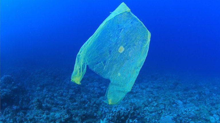 Gebruik plastic tasjes met 80% afgenomen sinds 2015