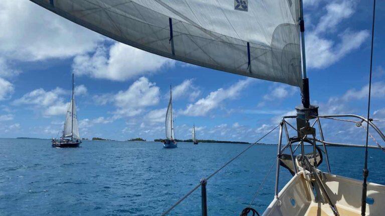 Sailors for Sustainability: iets terugdoen voor de natuur