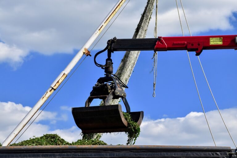 Gespot: Gooimeer deels verlost van fonteinkruid
