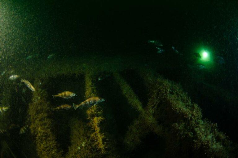 Betere bescherming voor scheepswrakken op Belgische zeebodem