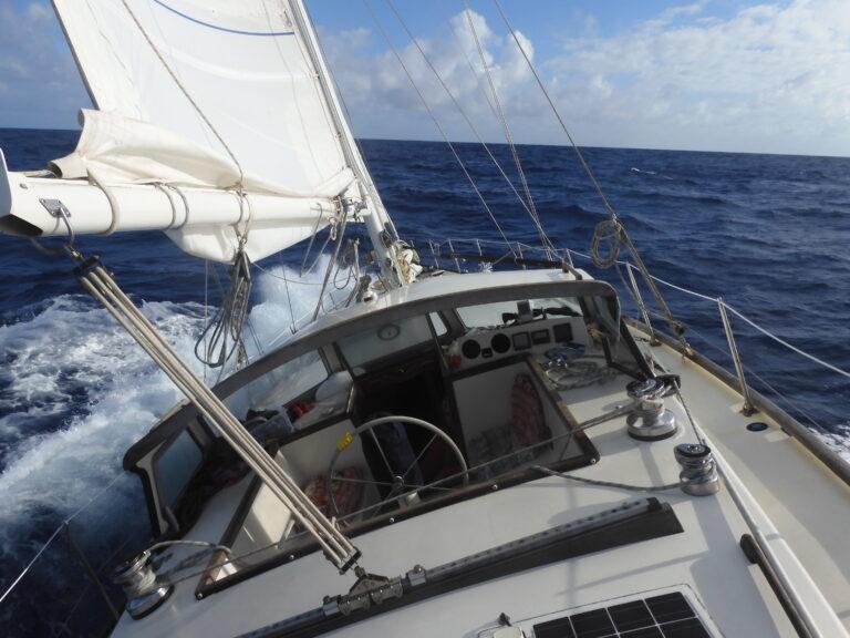 Column Anna: Een zee vol mijlpalen